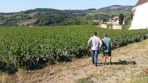 Domaine-Nicolas-Perrault-vins