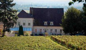 Domaine Morey-Coffinet vins montrachet