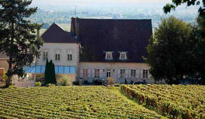Read more about the article Découvrez le Domaine Morey-Coffinet