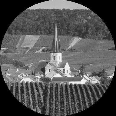 Champagne Adrien Renoir