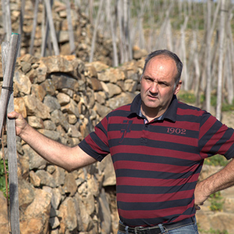 Christophe-Pichon-vigneron