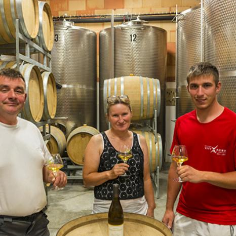 Domaine-Gondard-Perrin-vins