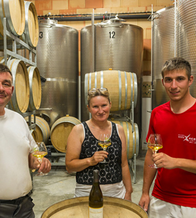 Read more about the article Visite au Domaine Gondard-Perrin
