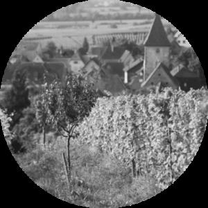 Château Respide-Médéville